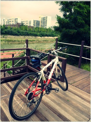내 자전거 #2