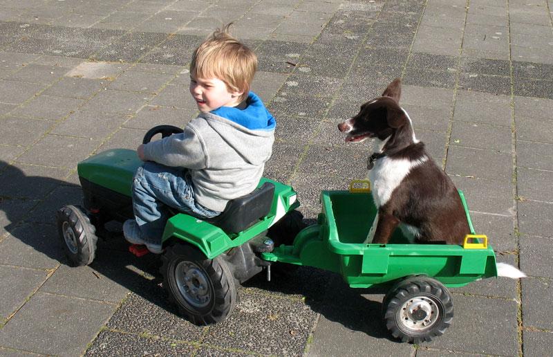 Viggo&Tractor-IMG_0876a
