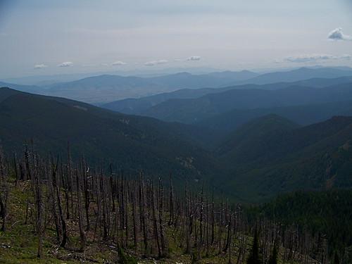 Penrose peak trail 385
