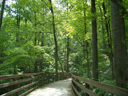 Path through woods to Monticello