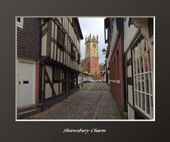 Shrewsbury Charm