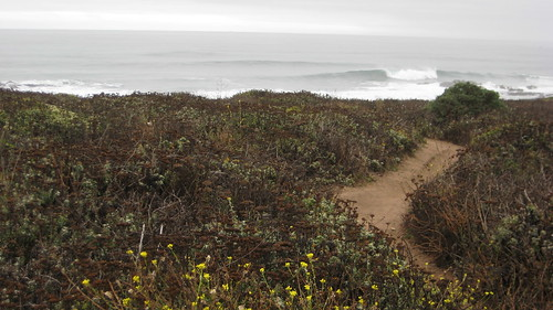 springtime, springtime activities, spring adventures, adventures, half moon bay