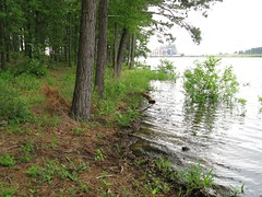 Martin Creek Lake - Powerplant