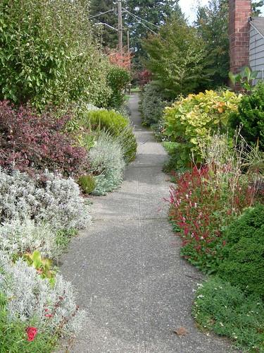 """Sidewalk """"botanical garden"""""""