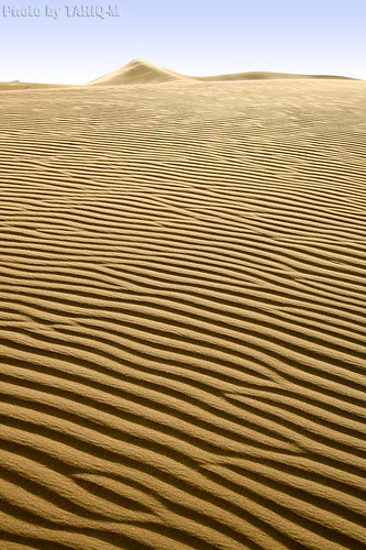 Sand Waves by TARIQ-M