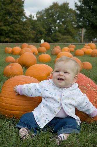 pumpkins 08-02