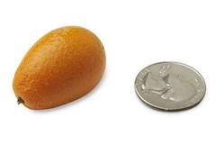10-kumquat