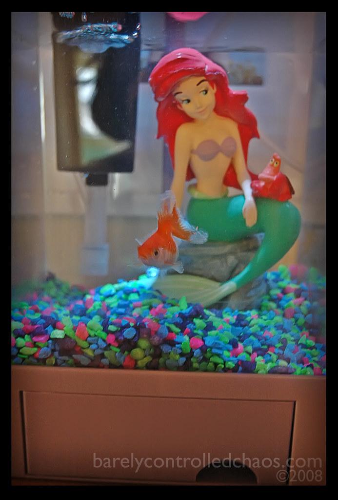 happyfish.jpg