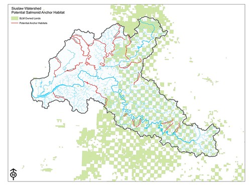 The Siuslaw Watershed, Potential Salmonid Anchor Habitat and the Western Oregon Plan Revision (WOPR)