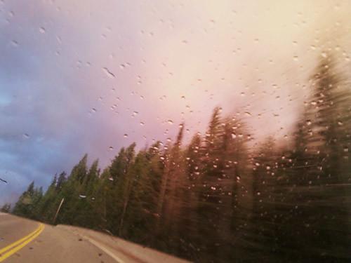 Rain Sweep by Karyn Ellis