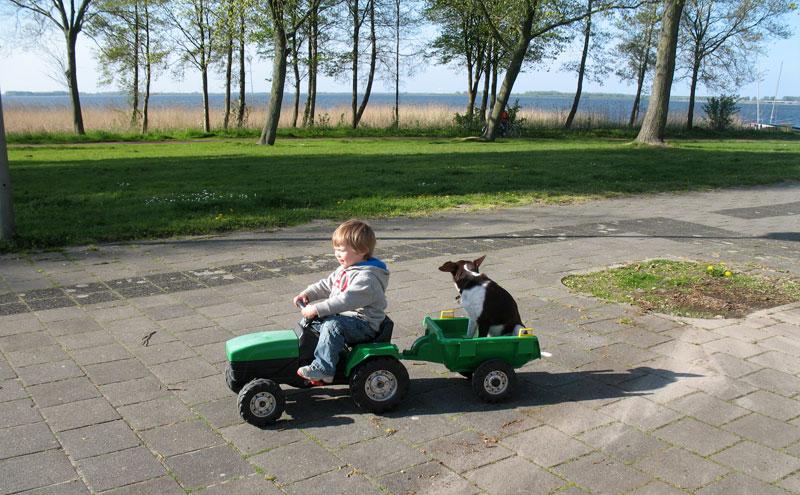 Viggo&tractor-IMG_0872a