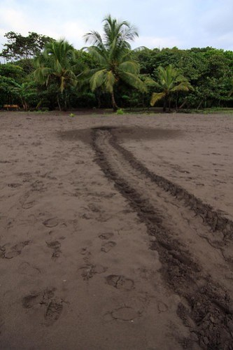 Costa Rica - Día 3 (149)