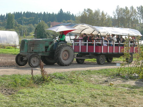 Tractor-pulled hayride