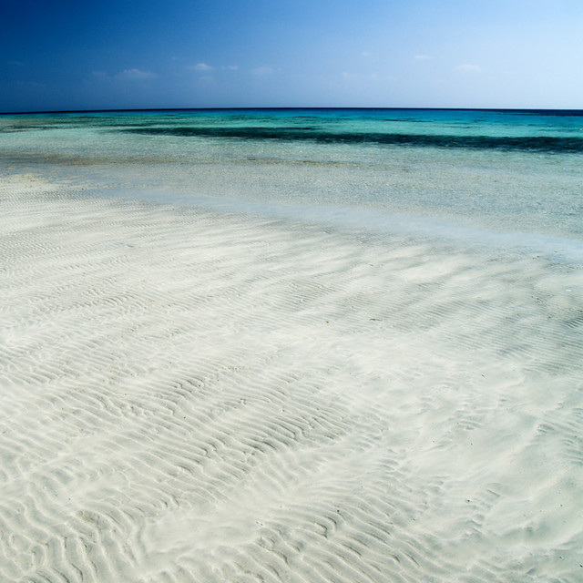 The Red (Sea) Carpet, Red Sea-White Sand