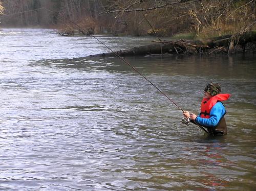 Steelhead Fisherman