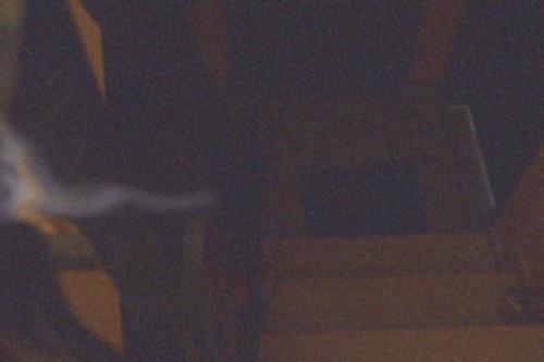 Dunny mag keine Fotos mit Blitz