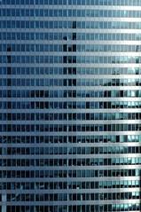 The windows of La Défense