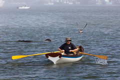 Man in Whaler-style row boat makes his way row...