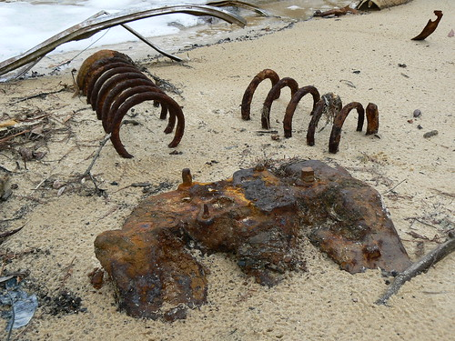 Newbold White House Recreation Trail - Car Fossil -  Springs and Engine Block