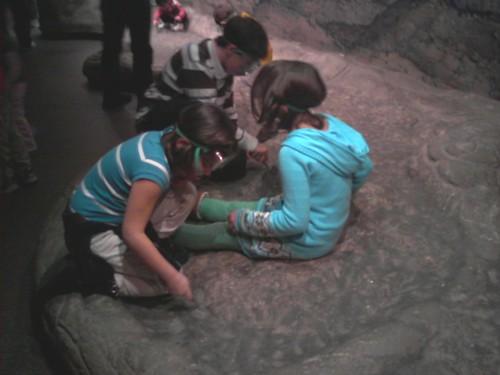 Cawleontologists
