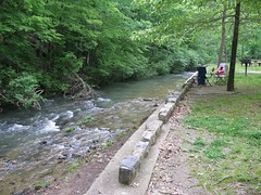 Gulpha Gorge - Upstream