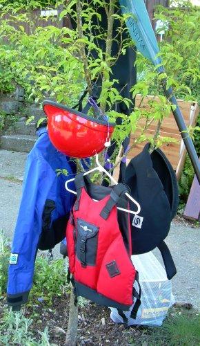 Kayak tree