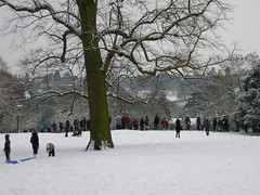 st_albans_winter_167