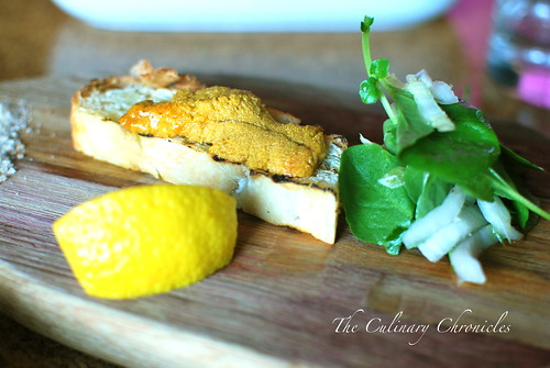 Sea Rocket Bistro: Sea Urchin Crostini