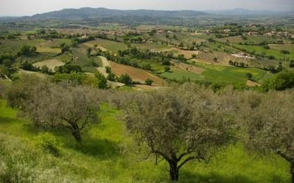 Visita a Montefalco in Umbria, tra chiese e Sagrantino
