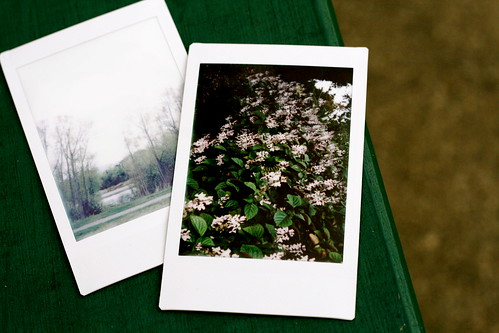 Saturday: Taking my instax out for a stroll