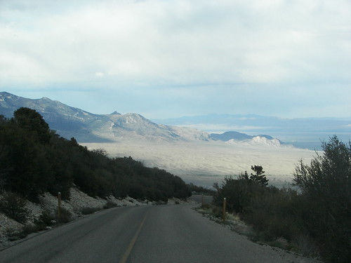 Wheeler Peak Road