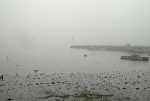 More mistiness in Wando