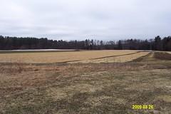 Picadilly Farm Field