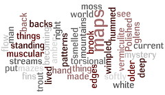 (Wordle) Cormac McCarthy - The Road
