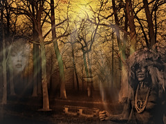 Shamans Dream by Bob G