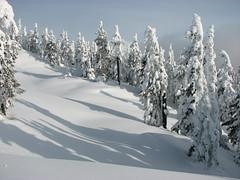 Elfin Lakes snowshoe, 19 Jan 2008