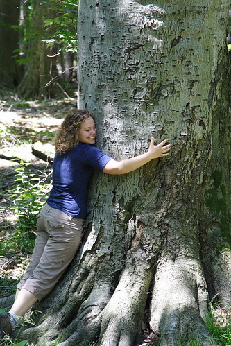 Karen Hugs a 255-year-old Beech