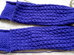 Purple Kosong Socs