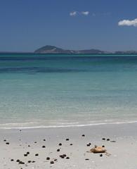 Kete Kina Rangiputa beach verti