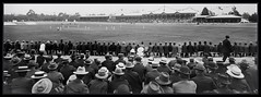 Adelaide Oval 1902