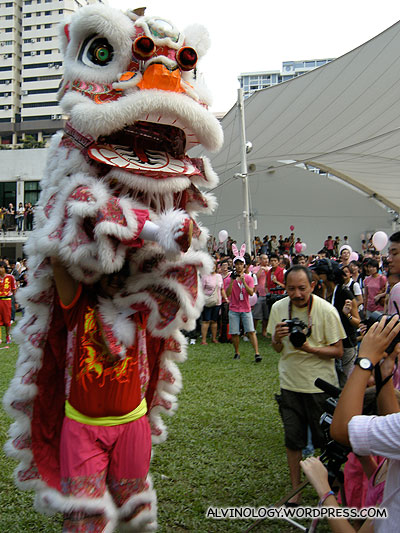 Pink lion dancers - even the guy inside wears pink pants