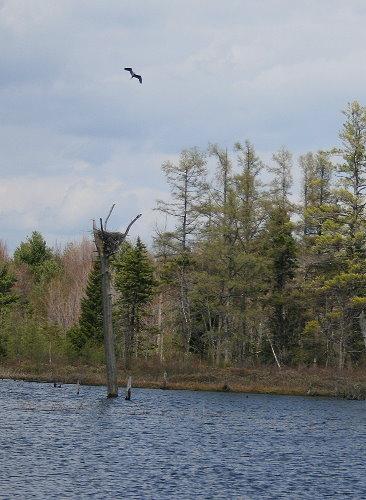 Frontenac Provincial Park