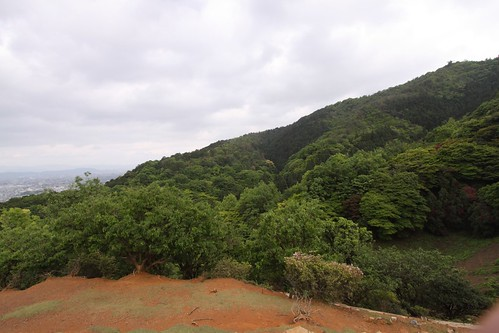 View from the top of Iwatayama Monkey Park