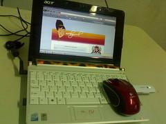 My blogging ammunition