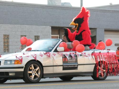 Cardinal in a Car