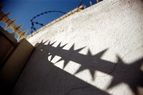 spiky shadow