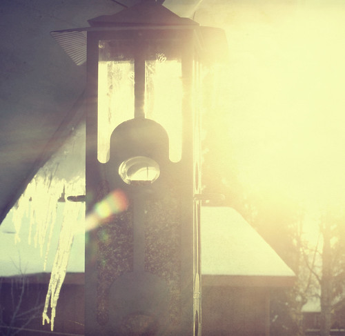 feeder flare (by Leaca's Philosophy)