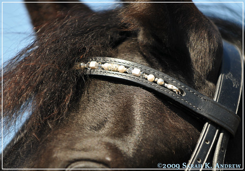 Simple Change browband