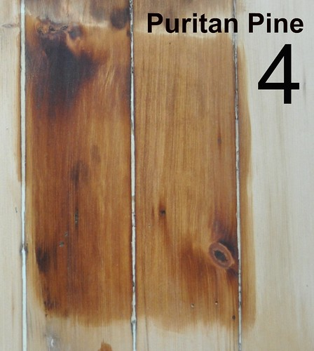 4: Puritan Pine
