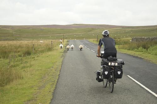 unterwegs durch Schottland